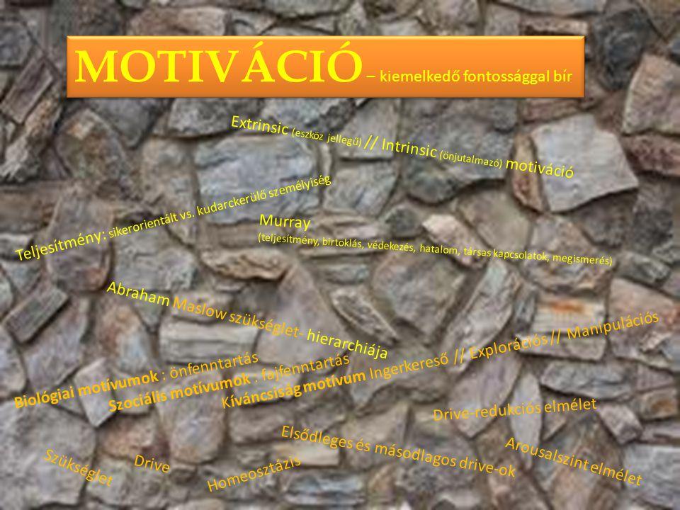 . MOTIVÁCIÓ – kiemelkedő fontossággal bír Extrinsic (eszköz jellegű) // Intrinsic (önjutalmazó) motiváció Szükséglet Elsődleges és másodlagos drive-ok