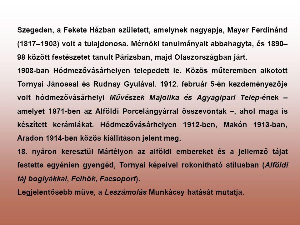 Szegeden, a Fekete Házban született, amelynek nagyapja, Mayer Ferdinánd (1817–1903) volt a tulajdonosa. Mérnöki tanulmányait abbahagyta, és 1890– 98 k
