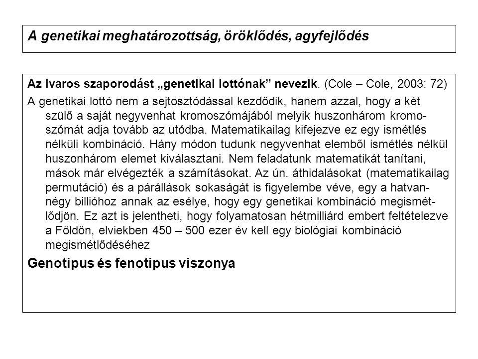"""A genetikai meghatározottság, öröklődés, agyfejlődés Az ivaros szaporodást """"genetikai lottónak"""" nevezik. (Cole – Cole, 2003: 72) A genetikai lottó nem"""