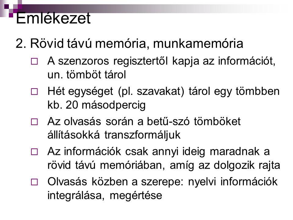 Emlékezet 2.Rövid távú memória, munkamemória  A szenzoros regisztertől kapja az információt, un.