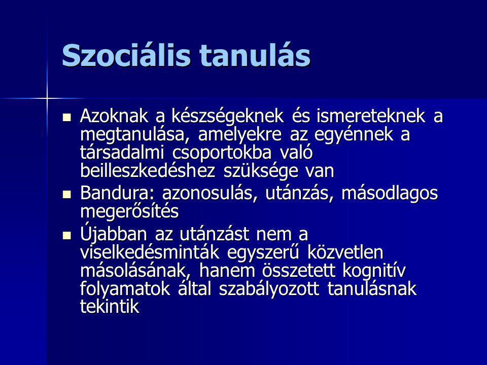 Szociális tanulás Azoknak a készségeknek és ismereteknek a megtanulása, amelyekre az egyénnek a társadalmi csoportokba való beilleszkedéshez szüksége
