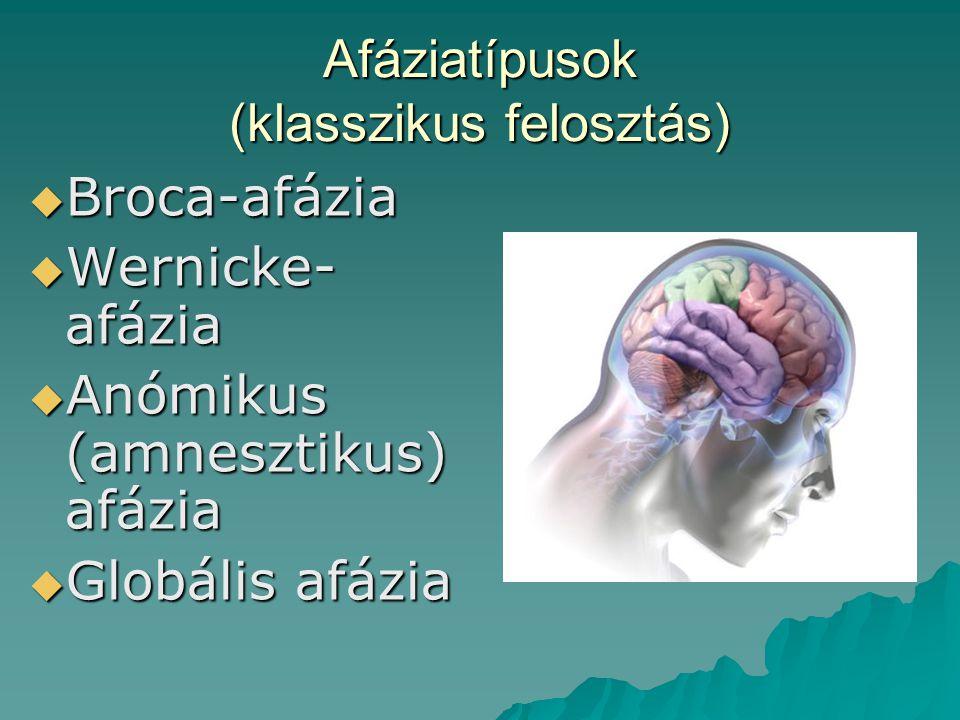 Afáziatípusok (klasszikus felosztás)  Broca-afázia  Wernicke- afázia  Anómikus (amnesztikus) afázia  Globális afázia