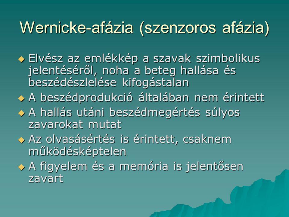 Wernicke-afázia (szenzoros afázia)  Elvész az emlékkép a szavak szimbolikus jelentéséről, noha a beteg hallása és beszédészlelése kifogástalan  A be