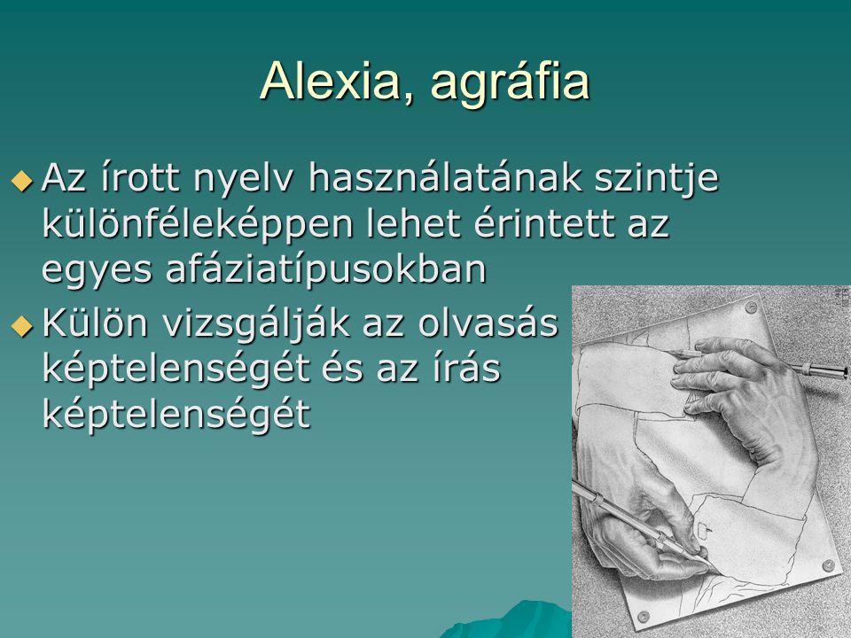 Alexia, agráfia  Az írott nyelv használatának szintje különféleképpen lehet érintett az egyes afáziatípusokban  Külön vizsgálják az olvasás képtelen