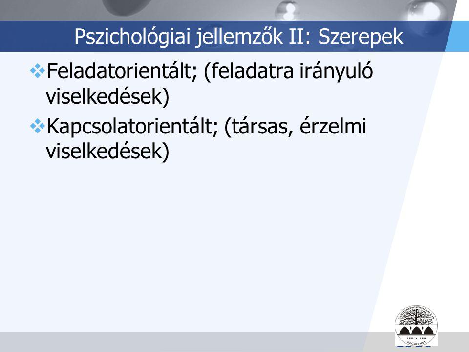 LOGO Pszichológiai jellemzők II: Szerepek  Feladatorientált; (feladatra irányuló viselkedések)  Kapcsolatorientált; (társas, érzelmi viselkedések)