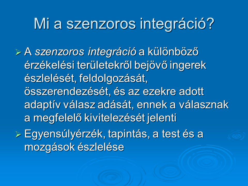 Mi a szenzoros integráció.