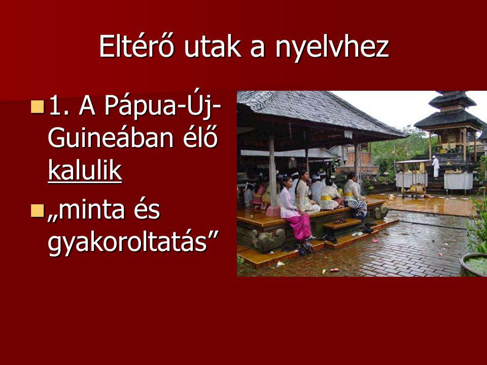 Eltérő utak a nyelvhez 1. A Pápua-Új- Guineában élő kalulik 1.