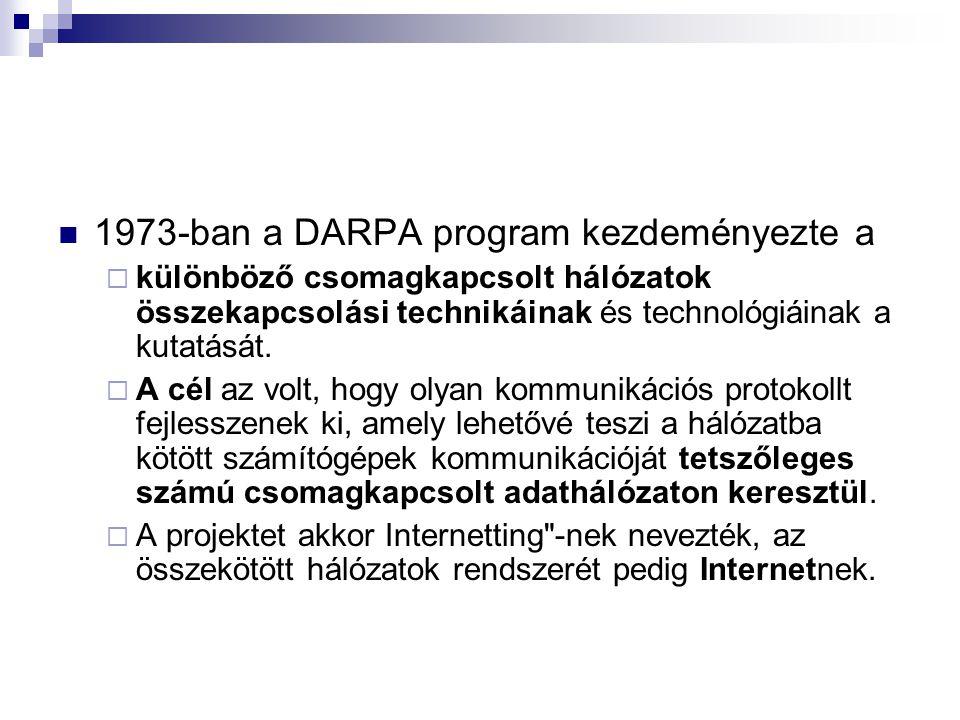 1973-ban a DARPA program kezdeményezte a  különböző csomagkapcsolt hálózatok összekapcsolási technikáinak és technológiáinak a kutatását.  A cél az