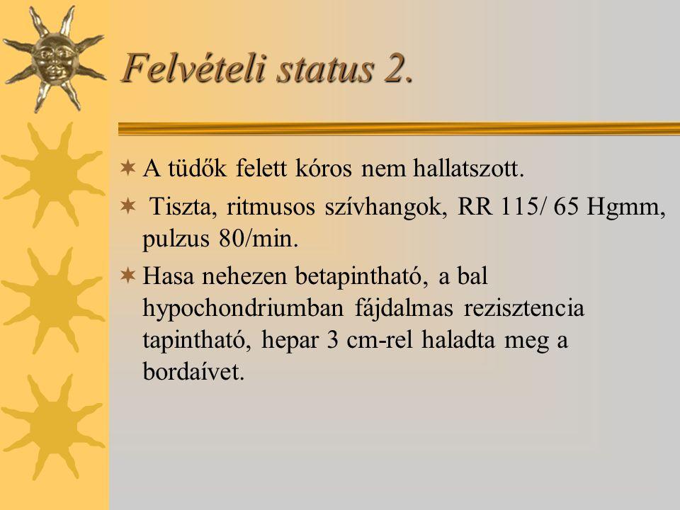 Felvételi status 2.  A tüdők felett kóros nem hallatszott.  Tiszta, ritmusos szívhangok, RR 115/ 65 Hgmm, pulzus 80/min.  Hasa nehezen betapintható