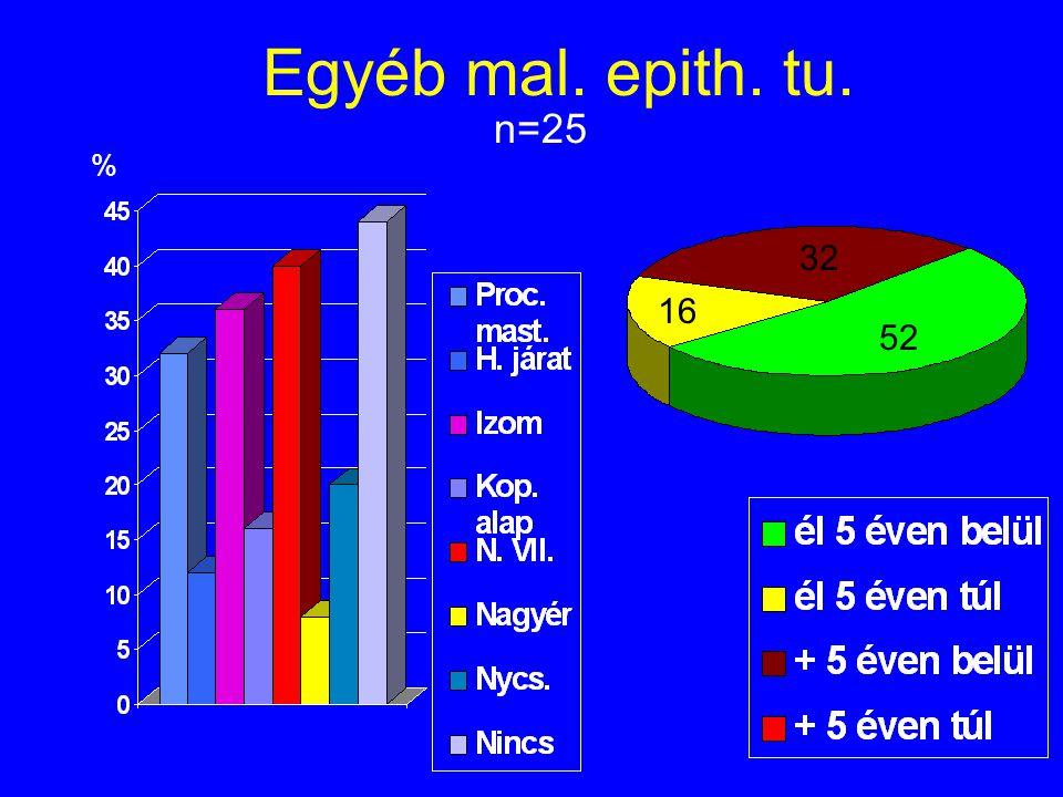 Egyéb mal. epith. tu. n=25 % 16 32 52