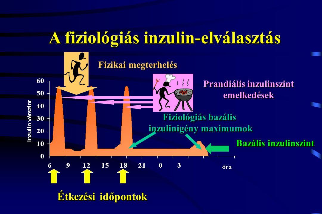 A fiziológiás inzulin-elválasztás Étkezési időpontok Bazális inzulinszint Prandiális inzulinszint emelkedések Fiziológiás bazális inzulinigény maximum