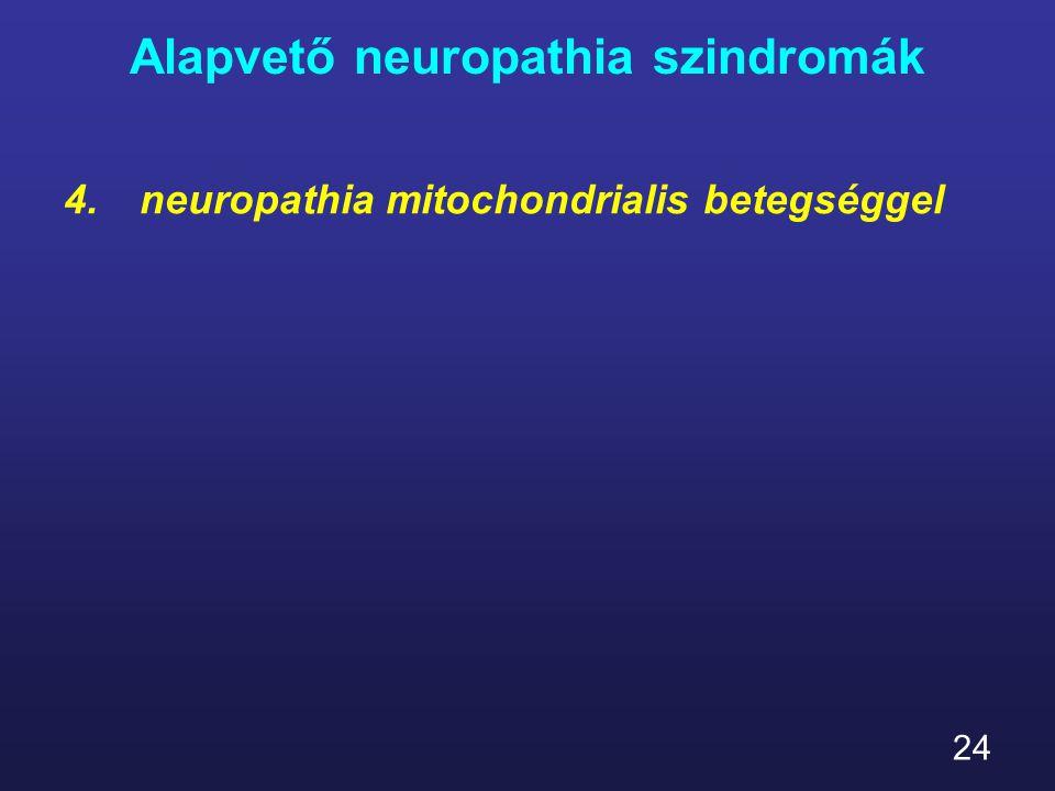 24 Alapvető neuropathia szindromák 4.neuropathia mitochondrialis betegséggel
