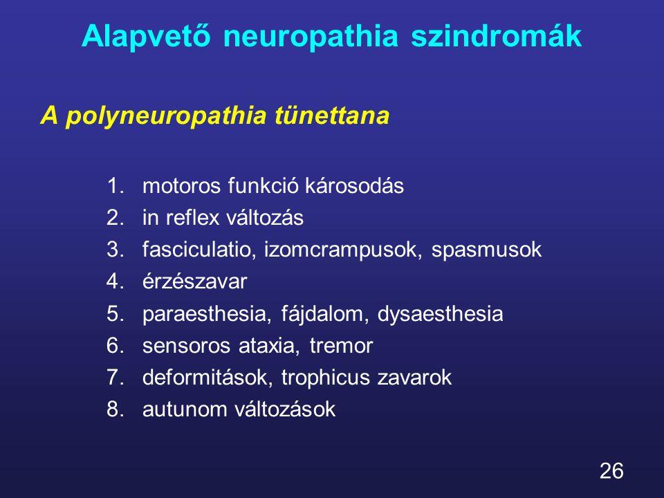 26 Alapvető neuropathia szindromák A polyneuropathia tünettana 1.motoros funkció károsodás 2.in reflex változás 3.fasciculatio, izomcrampusok, spasmus