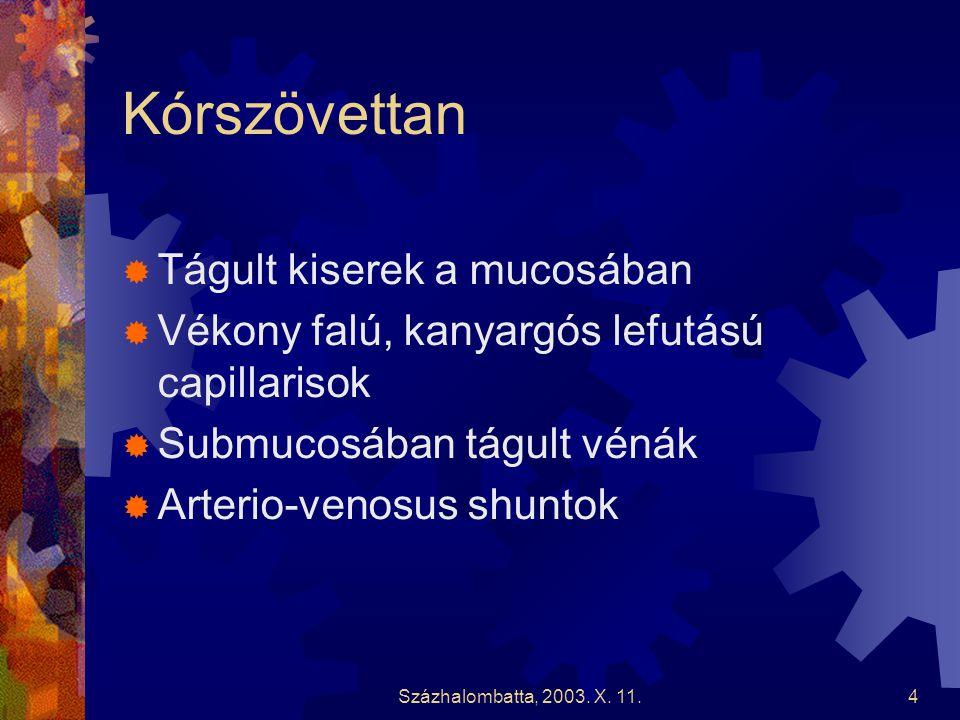 Százhalombatta, 2003.X.