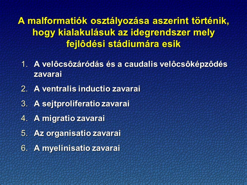A malformatiók osztályozása aszerint történik, hogy kialakulásuk az idegrendszer mely fejlôdési stádiumára esik 1.A velôcsôzáródás és a caudalis velôcsôképzôdés zavarai 2.A ventralis inductio zavarai 3.A sejtproliferatio zavarai 4.A migratio zavarai 5.Az organisatio zavarai 6.A myelinisatio zavarai