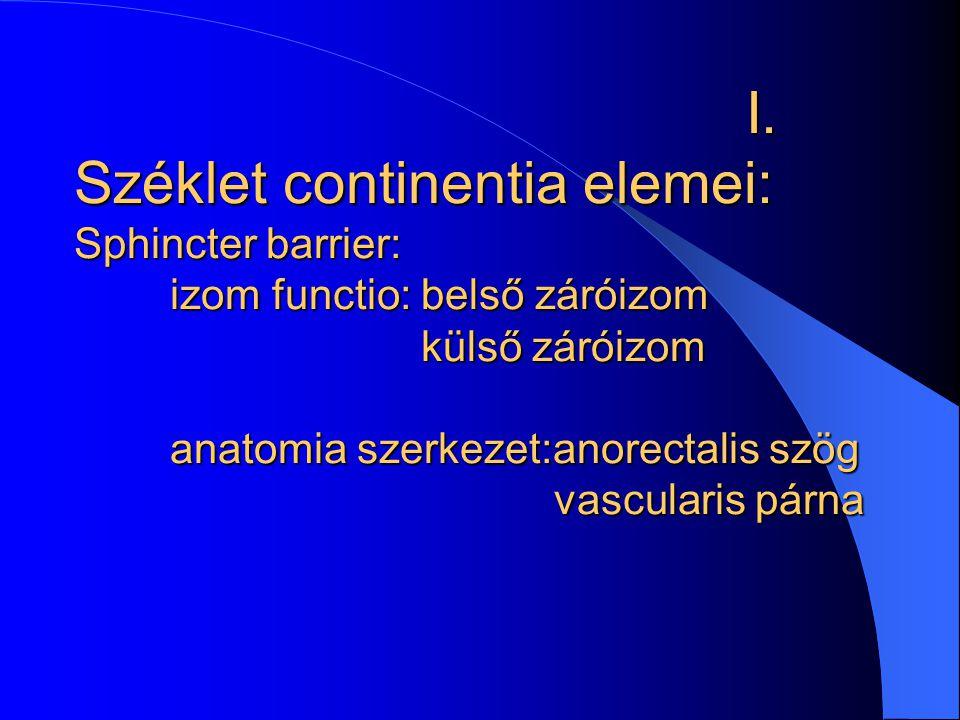 I. Széklet continentia elemei: Sphincter barrier: izom functio: belső záróizom külső záróizom anatomia szerkezet:anorectalis szög vascularis párna