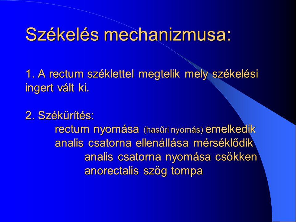 Székelés mechanizmusa: 1. A rectum széklettel megtelik mely székelési ingert vált ki. 2. Székürítés: rectum nyomása (hasűri nyomás) emelkedik analis c