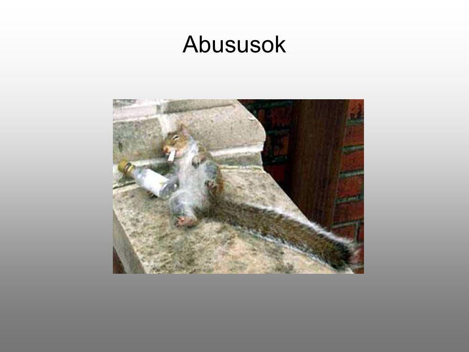 Abususok
