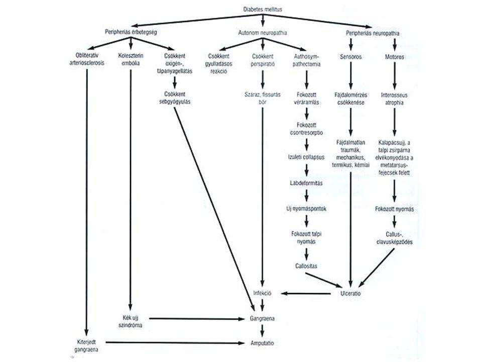 Ellátási algoritmus 1.
