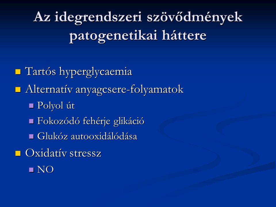 Az idegrendszeri szövődmények patogenetikai háttere Tartós hyperglycaemia Tartós hyperglycaemia Alternatív anyagcsere-folyamatok Alternatív anyagcsere