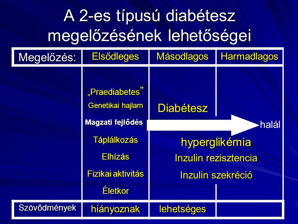 """A 2-es típusú diabétesz megelőzésének lehetőségei Megelőzés:ElsődlegesMásodlagosHarmadlagos """"Praediabetes """" Genetikai hajlam Diabétesz Magzati fejlődé"""