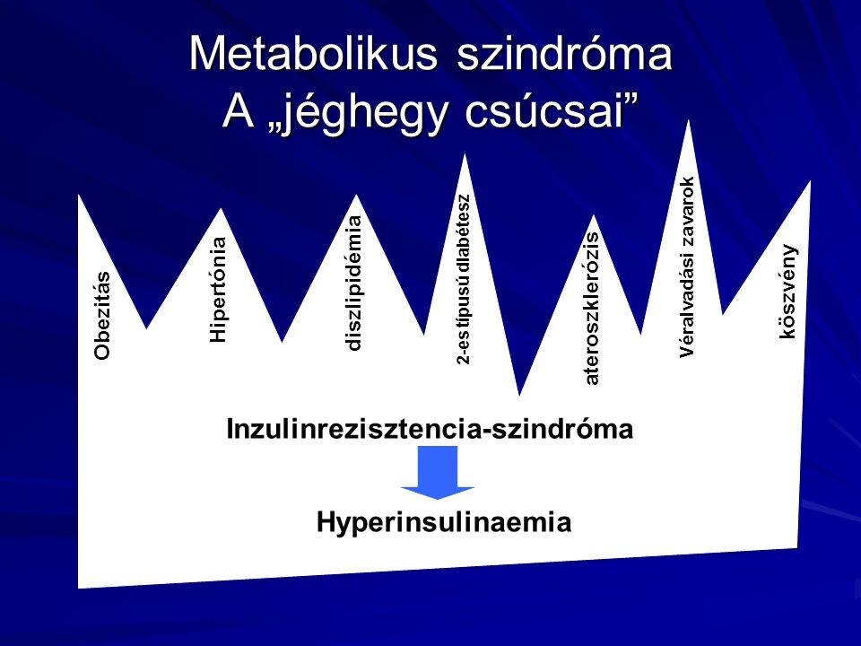 """Metabolikus szindróma A """"jéghegy csúcsai"""" Obezitás Hipertónia diszlipidémia 2-es típusú diabétesz Véralvadási zavarok köszvény ateroszklerózis Inzulin"""
