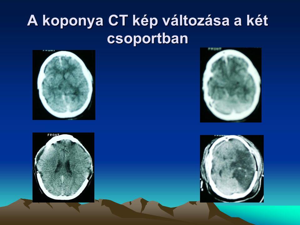A koponya CT kép változása a két csoportban