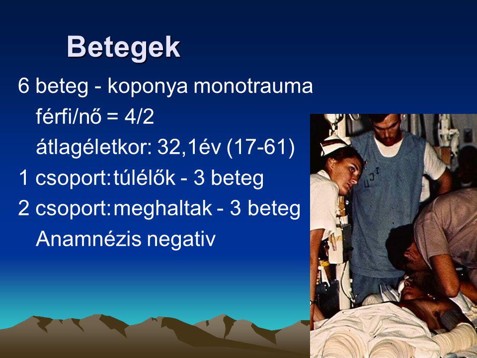Betegek 6 beteg - koponya monotrauma férfi/nő = 4/2 átlagéletkor: 32,1év (17-61) 1 csoport:túlélők - 3 beteg 2 csoport:meghaltak - 3 beteg Anamnézis n