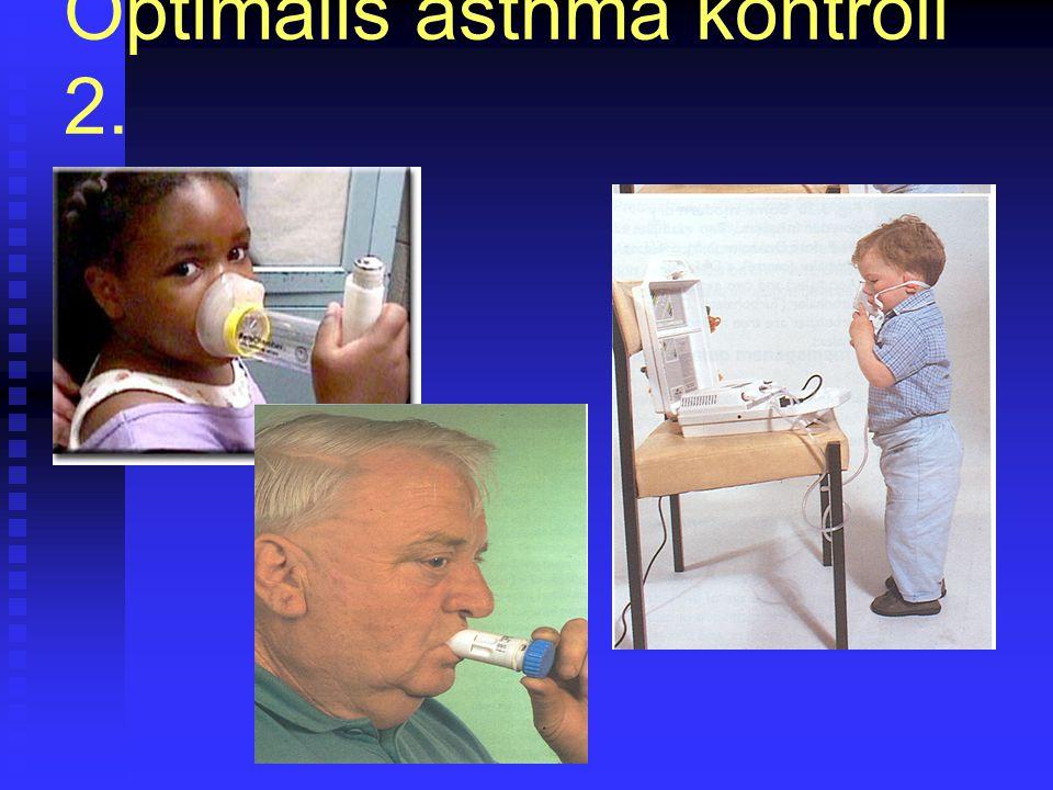 Optimális asthma kontroll 2.