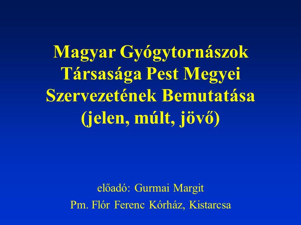MGYT PEST MEGYEI SZERVEZETÉNEK MEGALAKULÁSA 1994.December 15.