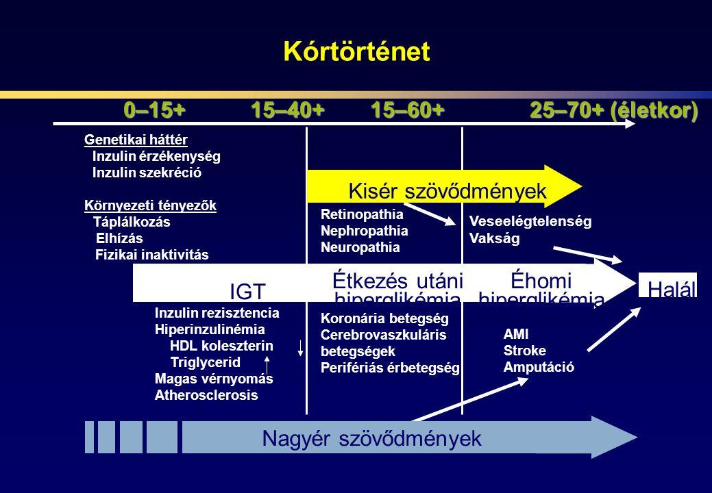 Kórtörténet Nagyér szövődmények 0–15+15–40+15–60+25–70+ (életkor) Halál IGT Kisér szövődmények Étkezés utáni hiperglikémia Éhomi hiperglikémia Genetik