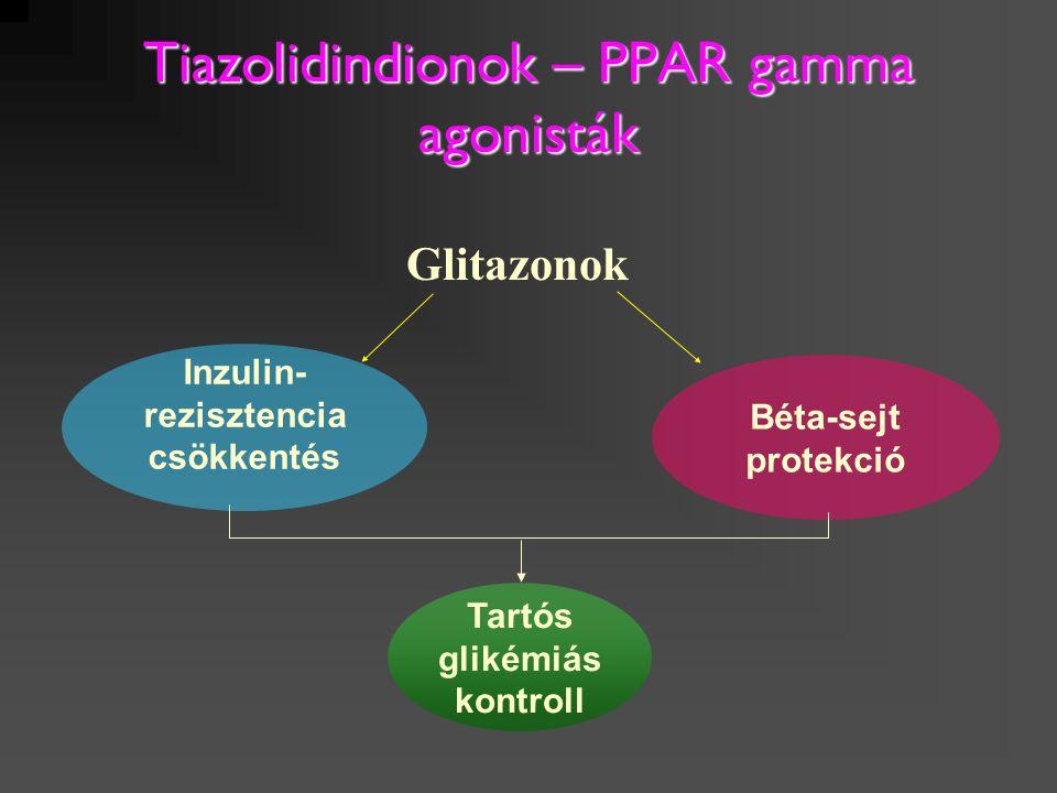 Tiazolidindionok – PPAR gamma agonisták Inzulin- rezisztencia csökkentés Béta-sejt protekció Tartós glikémiás kontroll Glitazonok