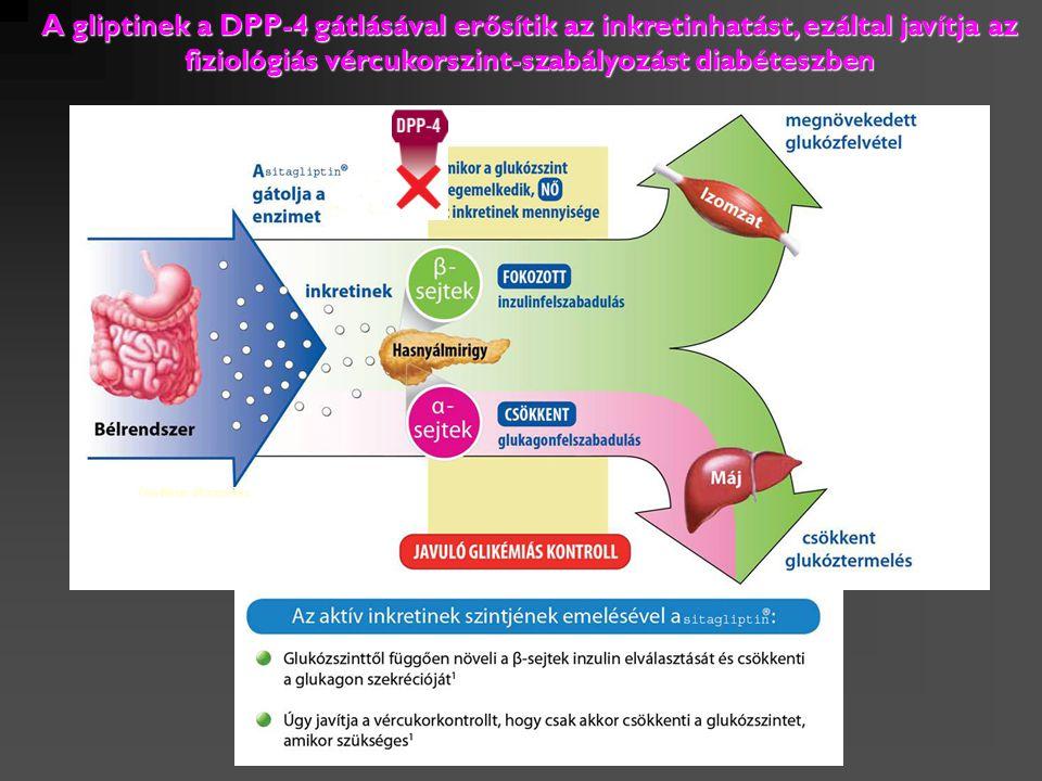 A gliptinek a DPP-4 gátlásával erősítik az inkretinhatást, ezáltal javítja az fiziológiás vércukorszint-szabályozást diabéteszben Grafikus ábrázolás