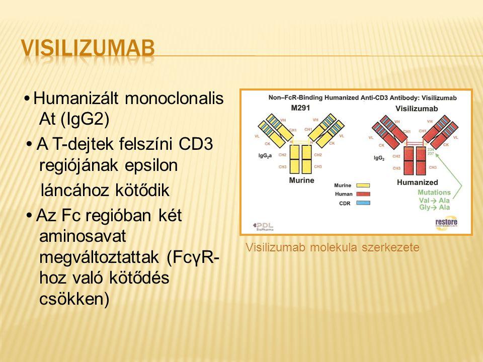 Humanizált monoclonalis At (IgG2) A T-dejtek felszíni CD3 regiójának epsilon láncához kötődik Az Fc regióban két aminosavat megváltoztattak (FcγR- hoz