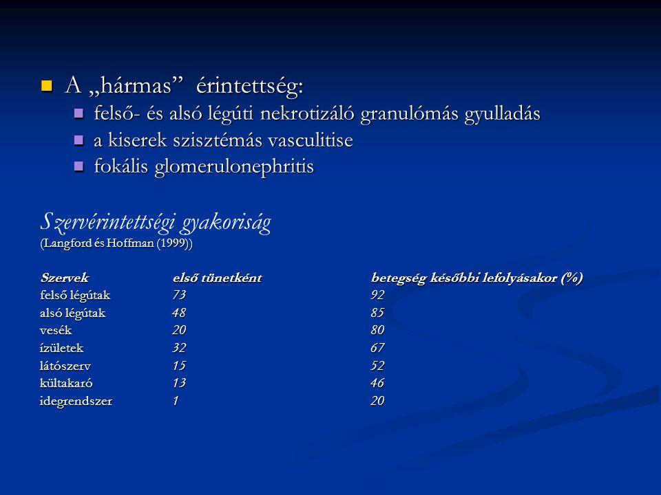 """A """"hármas érintettség: A """"hármas érintettség: felső- és alsó légúti nekrotizáló granulómás gyulladás felső- és alsó légúti nekrotizáló granulómás gyulladás a kiserek szisztémás vasculitise a kiserek szisztémás vasculitise fokális glomerulonephritis fokális glomerulonephritis Szervérintettségi gyakoriság (Langford és Hoffman (1999)) Szervek első tünetkéntbetegség későbbi lefolyásakor (%) felső légútak7392 alsó légútak4885 vesék2080 ízületek3267 látószerv1552 kültakaró1346 idegrendszer120"""