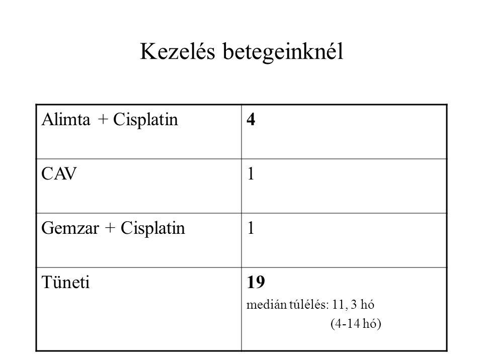 Kezelés betegeinknél Alimta + Cisplatin4 CAV1 Gemzar + Cisplatin1 Tüneti19 medián túlélés: 11, 3 hó (4-14 hó)