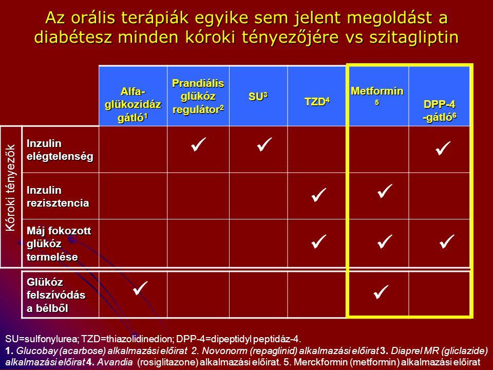 Alfa- glükozidáz gátló 1 Prandiális glükóz regulátor 2 SU 3 TZD 4 Metformin 5 DPP-4 -gátló 6 Inzulin elégtelenség Inzulin rezisztencia Máj fokozott gl