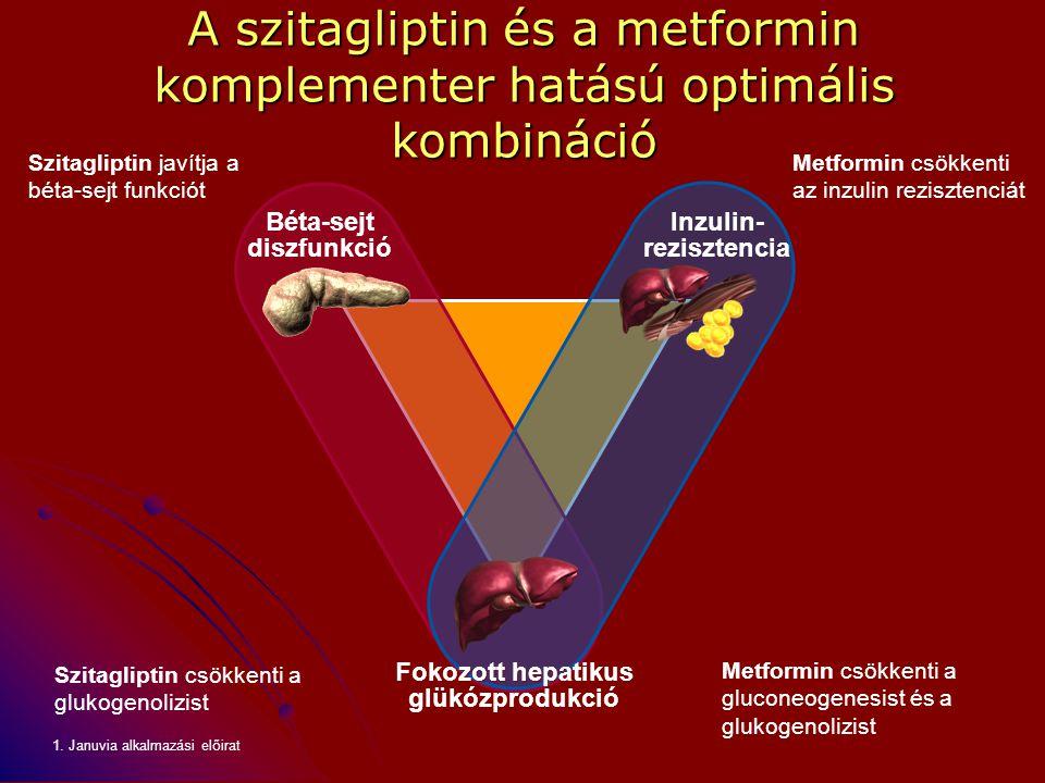 Szitagliptin javítja a béta-sejt funkciót Szitagliptin csökkenti a glukogenolizist Metformin csökkenti a gluconeogenesist és a glukogenolizist Metform