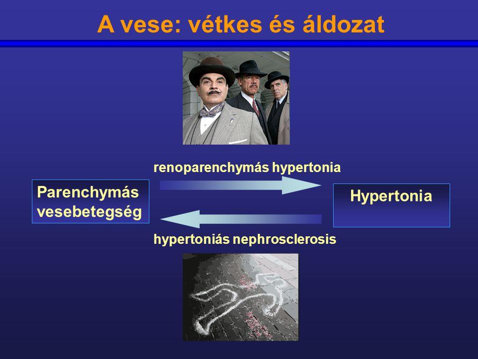 Renális hypoxia Oxidatív stress Renális RAAS Szisztémás RAAS Renális endothelin Szisztémás endothelin Vese renaláz Szisztémás renaláz NO PGE2 ACE2 Szimpatikus aktivitás Nátrium retenció Perifériás rezisztencia Renoparenchymás hypertónia – főbb mechanizmusok