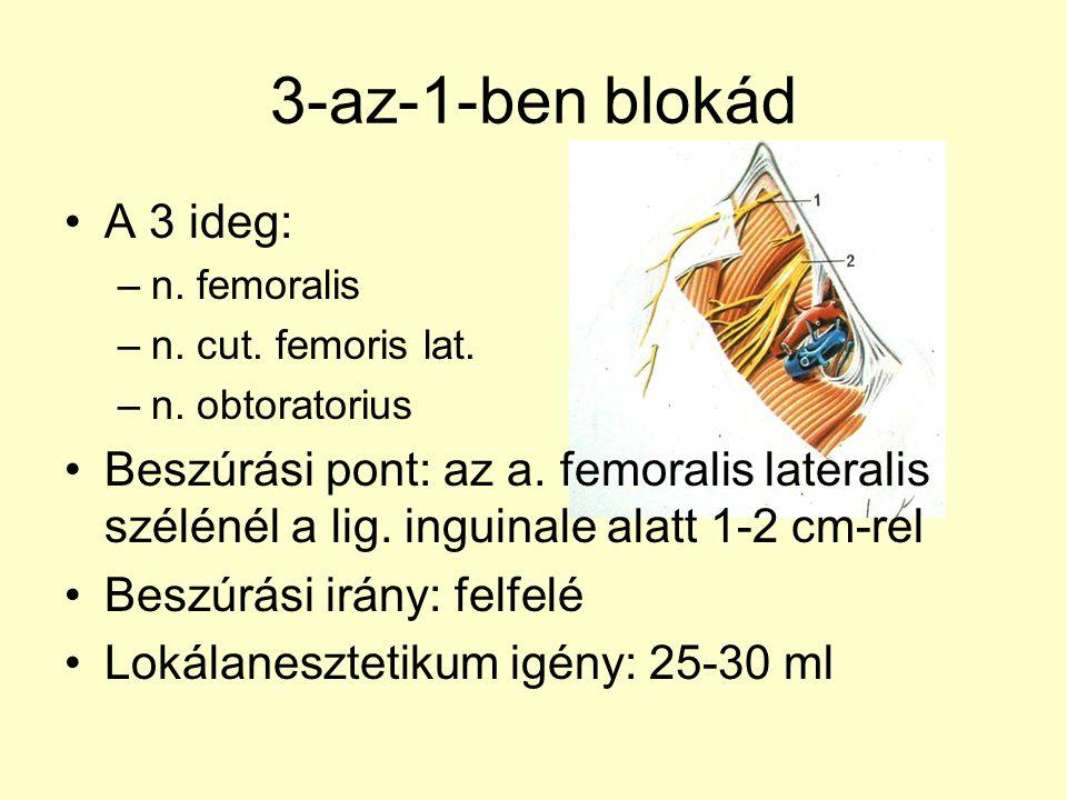 Szóba jöhető blokádok Plexus lumbalis –Psoas compartement blokk –3-az-1-ben blokád –Fascia lata blokád –Térd- és bokatáji blokádok Plexus sacralis –Parasacralis blokád –A n.