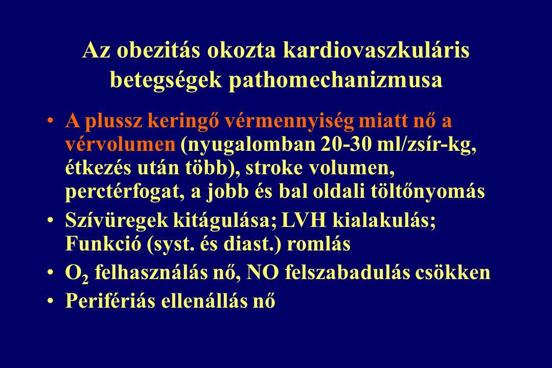 Az obezitás okozta kardiovaszkuláris betegségek pathomechanizmusa A plussz keringő vérmennyiség miatt nő a vérvolumen (nyugalomban 20-30 ml/zsír-kg, étkezés után több), stroke volumen, perctérfogat, a jobb és bal oldali töltőnyomás Szívüregek kitágulása; LVH kialakulás; Funkció (syst.