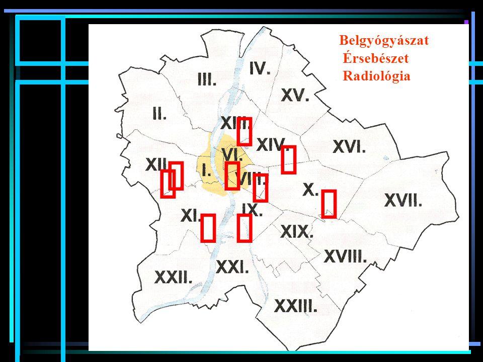         Belgyógyászat Érsebészet Radiológia 