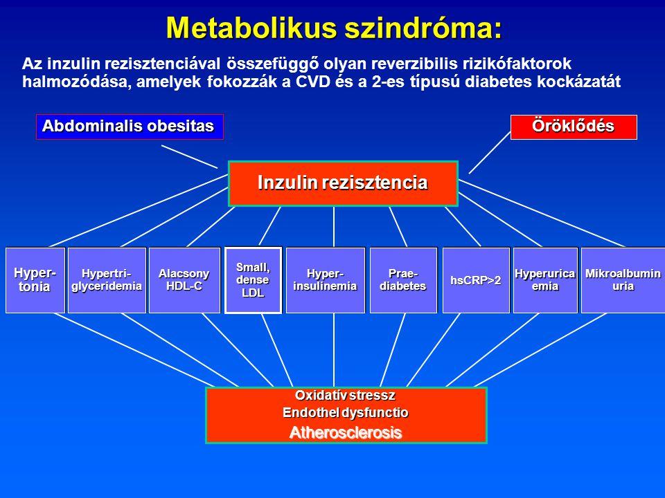 Metabolikus szindróma: Inzulin rezisztencia Hyper- tonia Hyperurica emia Alacsony HDL-C Small, dense LDL Hyper- insulinemia Prae- diabetes hsCRP>2hsCR
