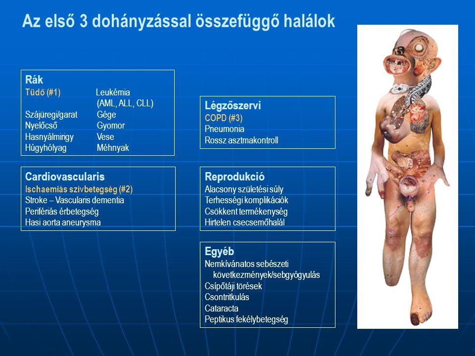 Az első 3 dohányzással összefüggő halálok Cardiovascularis Ischaemiás szívbetegség (#2) Stroke – Vascularis dementia Perifériás érbetegség Hasi aorta