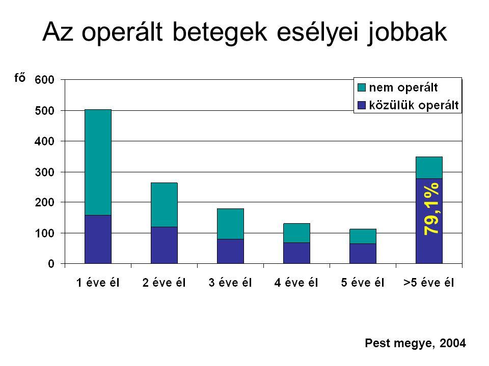 Az operált betegek esélyei jobbak Pest megye, 2004 fő 79,1%