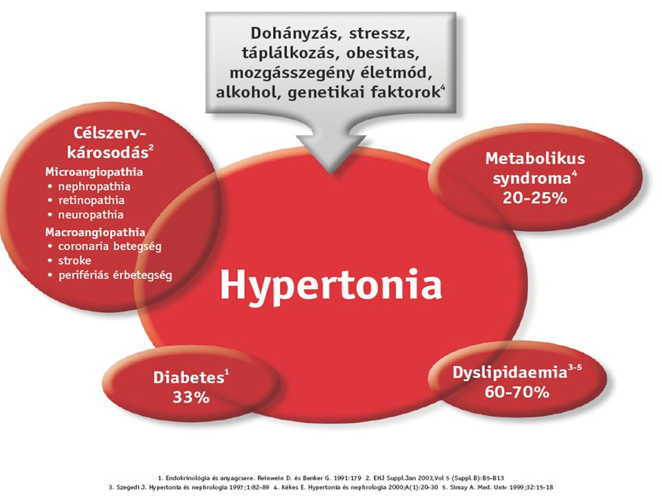 Myocardialis infarctus Arrhythmia izomvesztés Remodelling Kamradilatáció Szívelégtelenség Halál Coronaria thrombosis Myocardialis ischaemia Koszorúér betegség Atherosclerosis Bal kamra hipertrofia Rizikótényezők dohányzás, hipertónia, diabetes, túlsúly Neurohumorálisaktiváció Dzau V, Braunwald E.