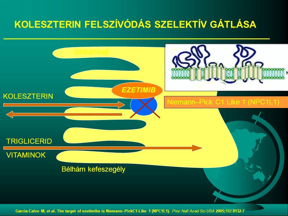 KOLESZTERIN Bélhám kefeszegély Bélhámsejt TRIGLICERID VITAMINOK Niemann–Pick C1 Like 1 (NPC1L1) EZETIMIB KOLESZTERIN FELSZÍVÓDÁS SZELEKTÍV GÁTLÁSA Gar