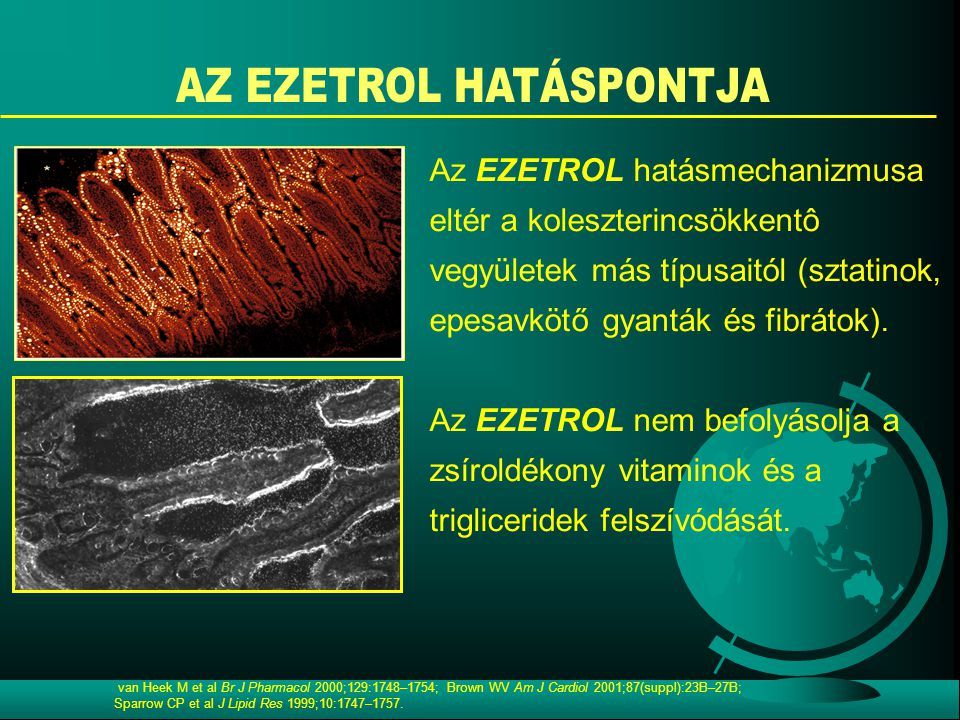 van Heek M et al Br J Pharmacol 2000;129:1748–1754; Brown WV Am J Cardiol 2001;87(suppl):23B–27B; Sparrow CP et al J Lipid Res 1999;10:1747–1757. Az E