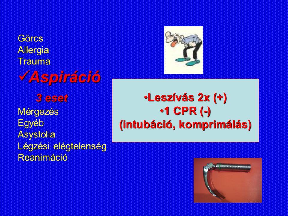 Görcs Allergia Trauma Aspiráció Aspiráció 3 eset 3 eset Mérgezés Egyéb Asystolia Légzési elégtelenség Reanimáció Leszívás 2x (+)Leszívás 2x (+) 1 CPR
