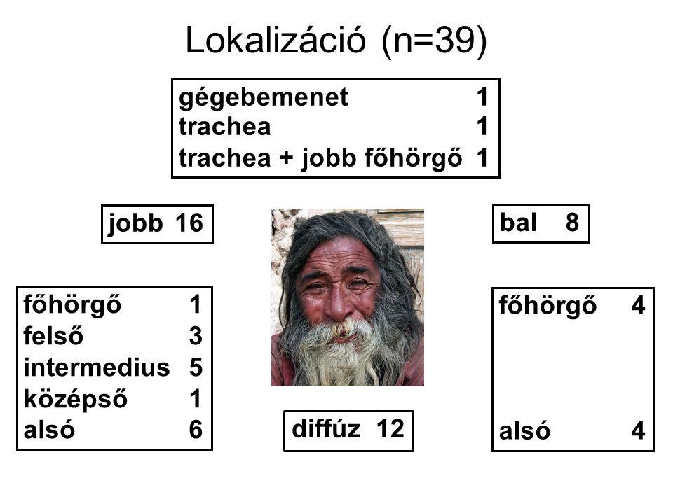 Lokalizáció (n=39) gégebemenet1 trachea1 trachea + jobb főhörgő1 bal8 jobb16 főhörgő4 alsó4 főhörgő1 felső3 intermedius5 középső1 alsó6 diffúz 12